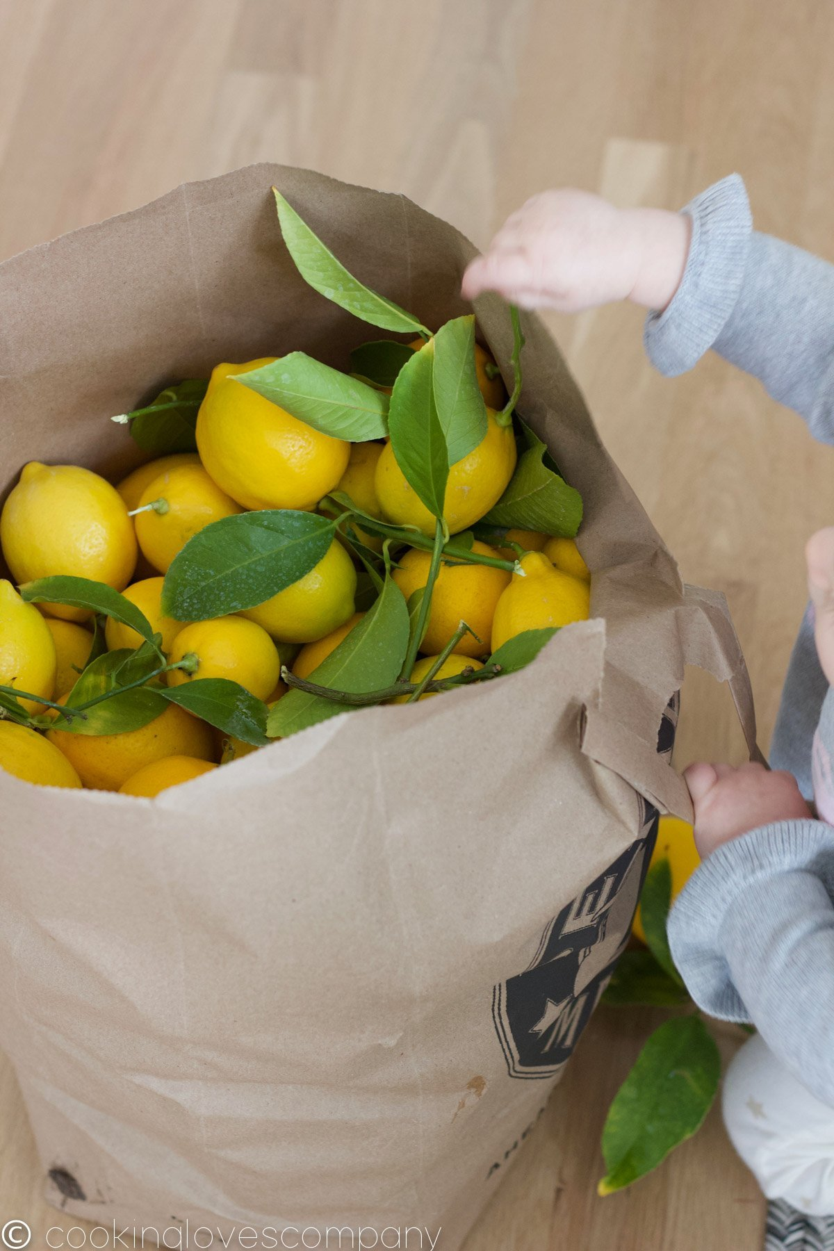 A brown paper bag full of lemons and a baby going through the bag.